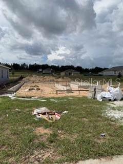 3041 Sunscape Ter, Groveland, FL 34736 (MLS #G5021825) :: 54 Realty