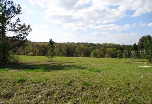 41509 Saddle Ridge Lane, Weirsdale, FL 32195 (MLS #G5021957) :: The Light Team