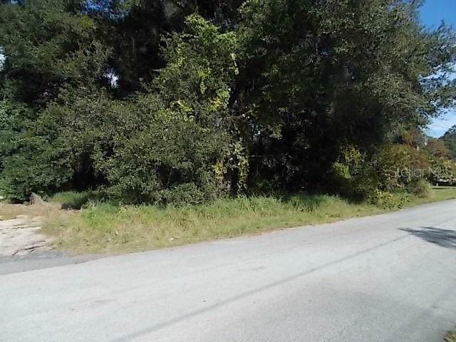 Wayne Road, Fruitland Park, FL 34731 (MLS #G5023224) :: Rabell Realty Group
