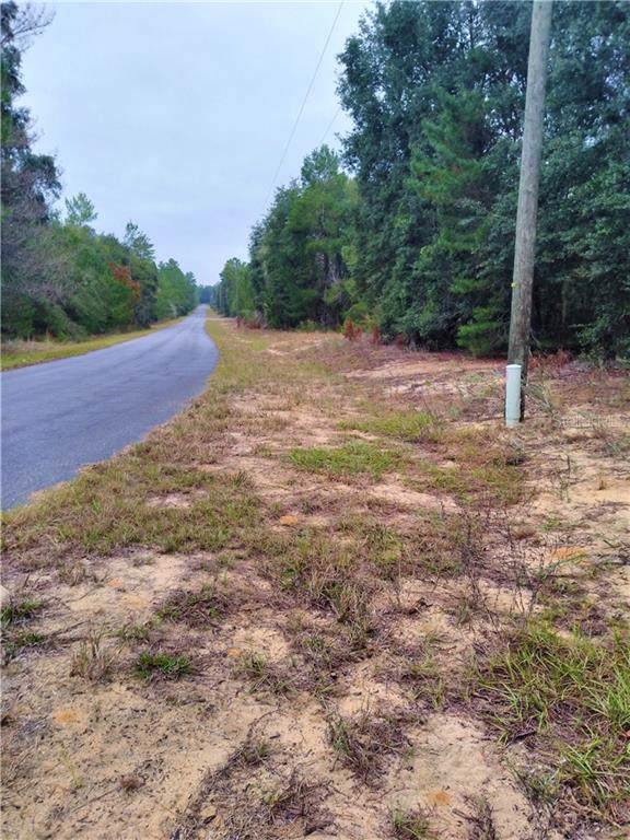 Malauka Pass Course, Ocklawaha, FL 32179 (MLS #G5023647) :: Cartwright Realty