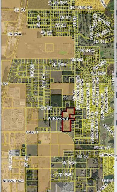 Cr 128, Wildwood, FL 34785 (MLS #G5023820) :: Armel Real Estate