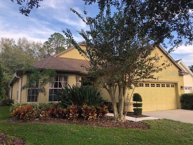 10405 Edgefield Place, Tampa, FL 33626 (MLS #G5024910) :: 54 Realty