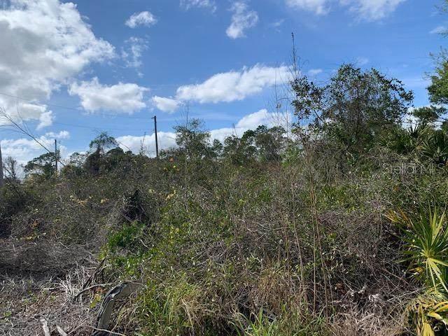 Clay Street, Leesburg, FL 34788 (MLS #G5025918) :: Team Bohannon Keller Williams, Tampa Properties