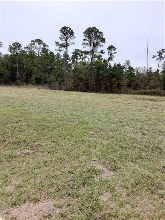 Falabella Court, Groveland, FL 34736 (MLS #G5026201) :: GO Realty