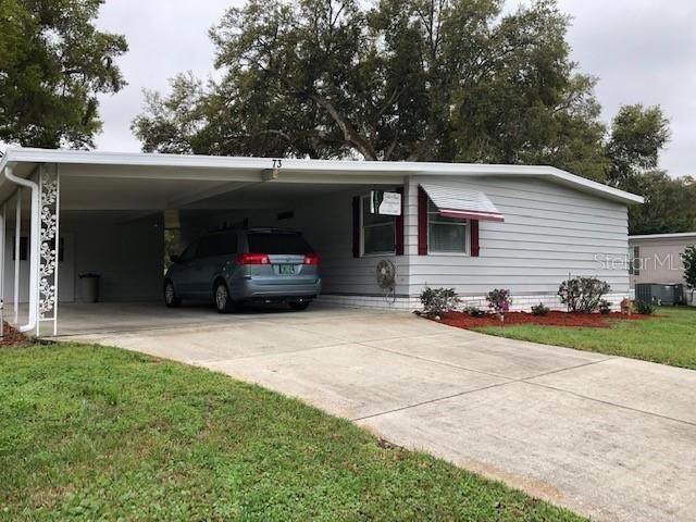 73 Big Oak Lane, Wildwood, FL 34785 (MLS #G5026471) :: Baird Realty Group