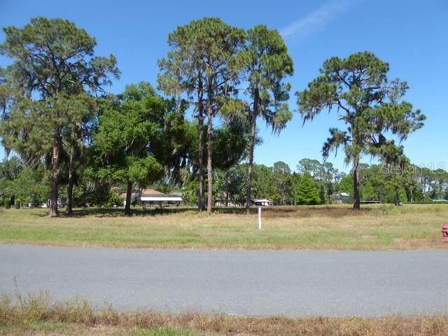 34966 Golden Tree Drive - Photo 1