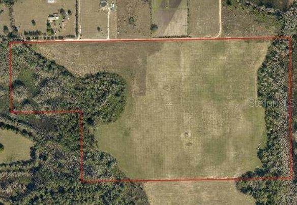Paso Fino Lane, Clermont, FL 34711 (MLS #G5028917) :: Griffin Group