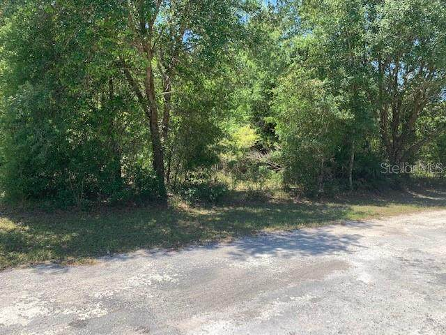 33170 Round Stone Street, Webster, FL 33597 (MLS #G5029406) :: Realty Executives Mid Florida