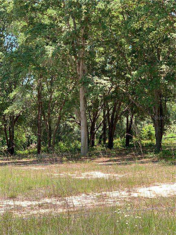 41906 Outlaw Lane, Weirsdale, FL 32195 (MLS #G5029532) :: The Figueroa Team