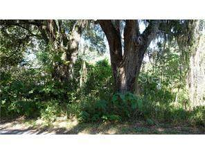 Lots 12-13 Nw 4Th Street, Webster, FL 33597 (MLS #G5030345) :: Heckler Realty