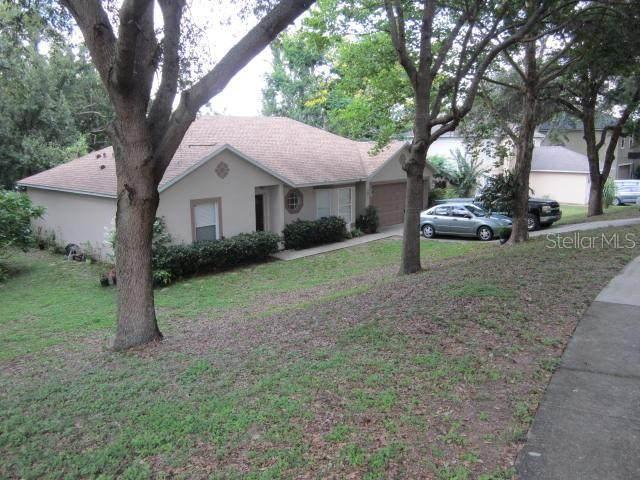 388 Brimming Lake Road, Minneola, FL 34715 (MLS #G5030569) :: Burwell Real Estate