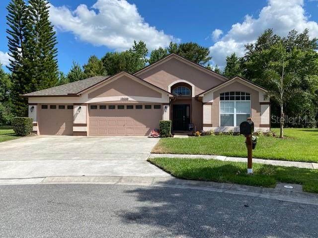 10600 Creel Court, Orlando, FL 32825 (MLS #G5031158) :: CENTURY 21 OneBlue