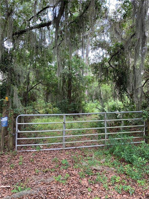 Lincoln Road, Leesburg, FL 34788 (MLS #G5031163) :: Team Borham at Keller Williams Realty
