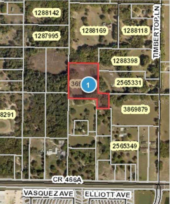 803 County Road 466A, Fruitland Park, FL 34731 (MLS #G5032483) :: Burwell Real Estate