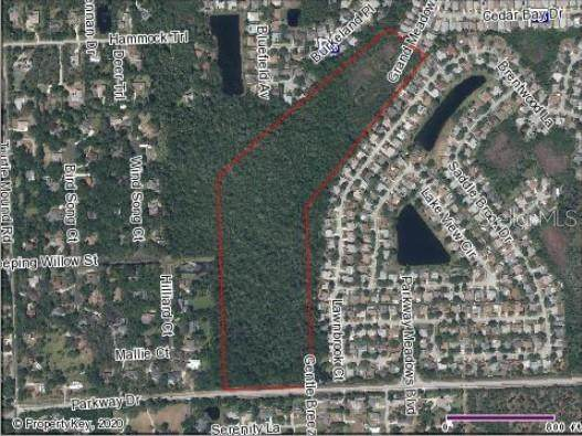 Parkway Drive, Melbourne, FL 32934 (MLS #G5033641) :: New Home Partners