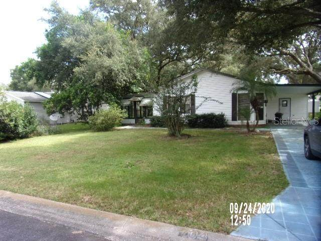 704 Harper Place, The Villages, FL 32159 (MLS #G5034685) :: Realty Executives in The Villages