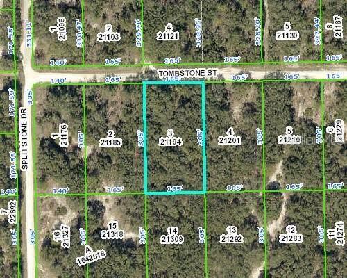 Tombstone Street, Webster, FL 33597 (MLS #G5035064) :: Baird Realty Group