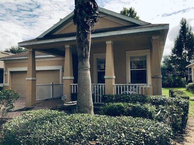 116 Flame Vine Way, Groveland, FL 34736 (MLS #G5036232) :: MVP Realty