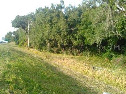 Us Hwy 441/27, Summerfield, FL 34491 (MLS #G5036278) :: Griffin Group