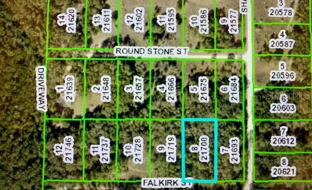 Falkirk Street, Webster, FL 33597 (MLS #G5037111) :: Everlane Realty