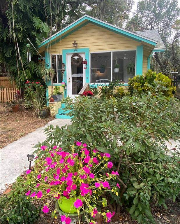535 E 11TH Avenue, Mount Dora, FL 32757 (MLS #G5037588) :: Visionary Properties Inc