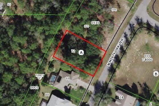 6240 N Misty Oak Terrace, Beverly Hills, FL 34465 (MLS #G5037593) :: Rabell Realty Group