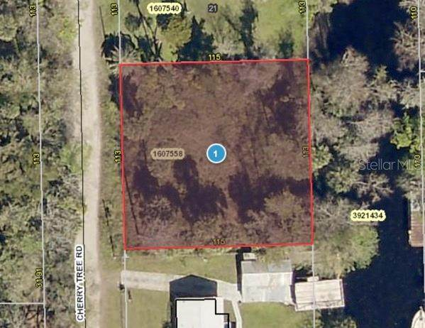 Cherry Tree Rd, Astor, FL 32102 (MLS #G5038323) :: Florida Real Estate Sellers at Keller Williams Realty