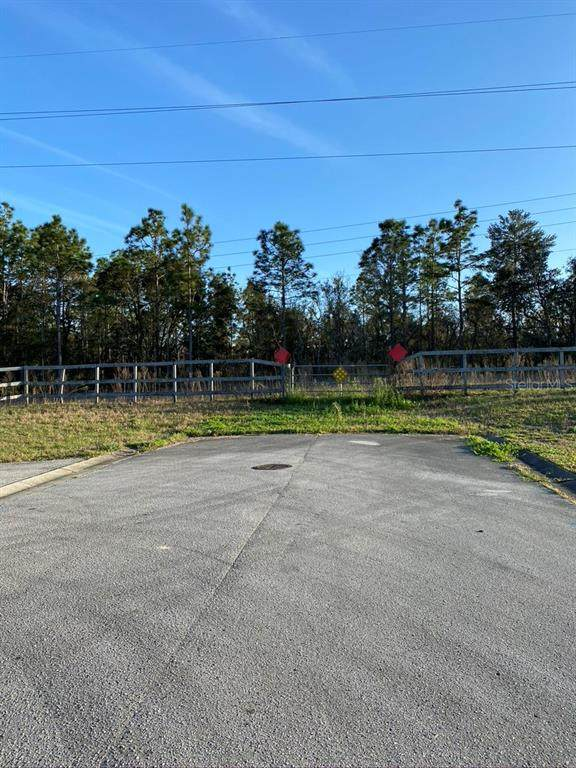 5280 W Cinnamon Ridge Drive, Lecanto, FL 34461 (MLS #G5039041) :: Carmena and Associates Realty Group