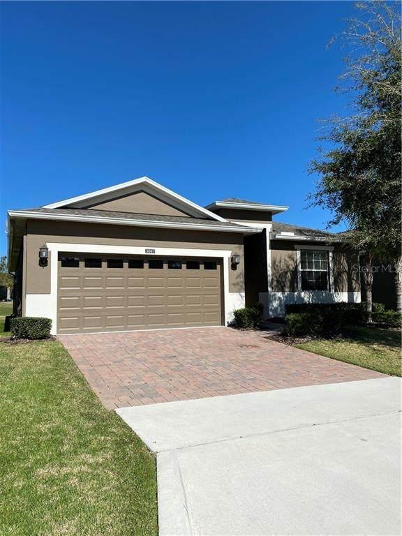 3847 Serena Lane, Clermont, FL 34711 (MLS #G5039450) :: Century 21 Professional Group
