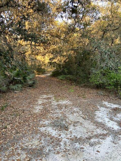 Treasure Island Road, Leesburg, FL 34788 (MLS #G5039546) :: Southern Associates Realty LLC