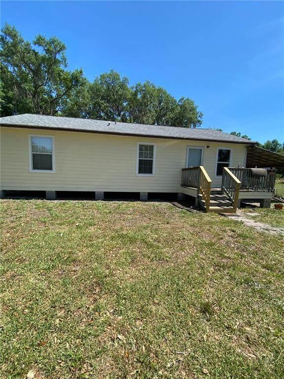 Webster, FL 33597 :: Zarghami Group