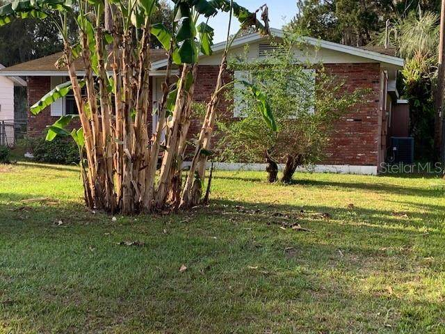 1137 Cr 464, Lake Panasoffkee, FL 33538 (MLS #G5040733) :: Sarasota Home Specialists