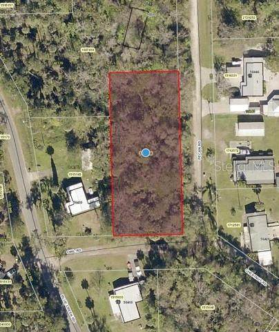 Owl Road, Astor, FL 32102 (MLS #G5041488) :: Team Borham at Keller Williams Realty