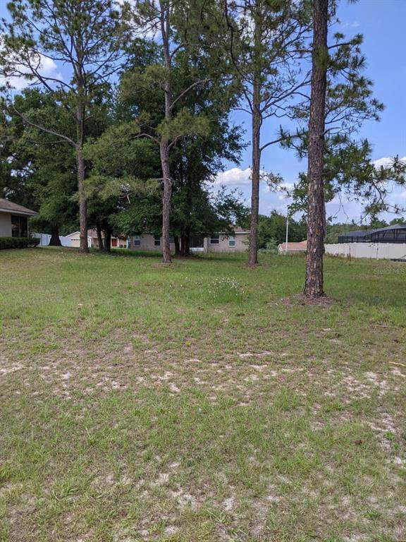 Highland Trail, Lady Lake, FL 32159 (MLS #G5041490) :: Premier Home Experts