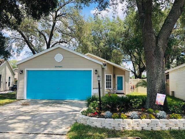 25320 Green Heron Drive, Leesburg, FL 34748 (MLS #G5041741) :: Pepine Realty