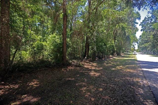 6810 SW 12TH Court, Ocala, FL 34476 (MLS #G5041924) :: Armel Real Estate