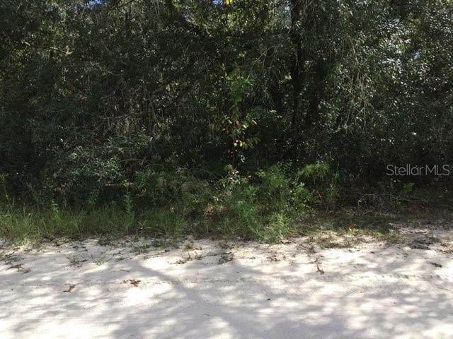 LOT 4 NE 65TH Lane, Williston, FL 32696 (MLS #G5042192) :: Gate Arty & the Group - Keller Williams Realty Smart