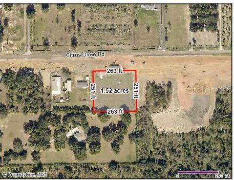 12440 Citrus Grove Road, Clermont, FL 34715 (MLS #G5042836) :: Gate Arty & the Group - Keller Williams Realty Smart