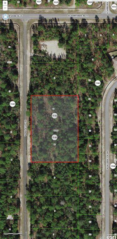 4054 W Malaluka Circle, Citrus Springs, FL 34433 (MLS #G5043252) :: Team Turner