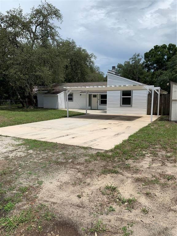 34055 August Avenue, Webster, FL 33597 (MLS #G5043337) :: Your Florida House Team