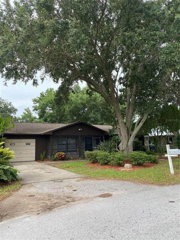 1124 Clara Avenue, Tavares, FL 32778 (MLS #G5043506) :: Bridge Realty Group