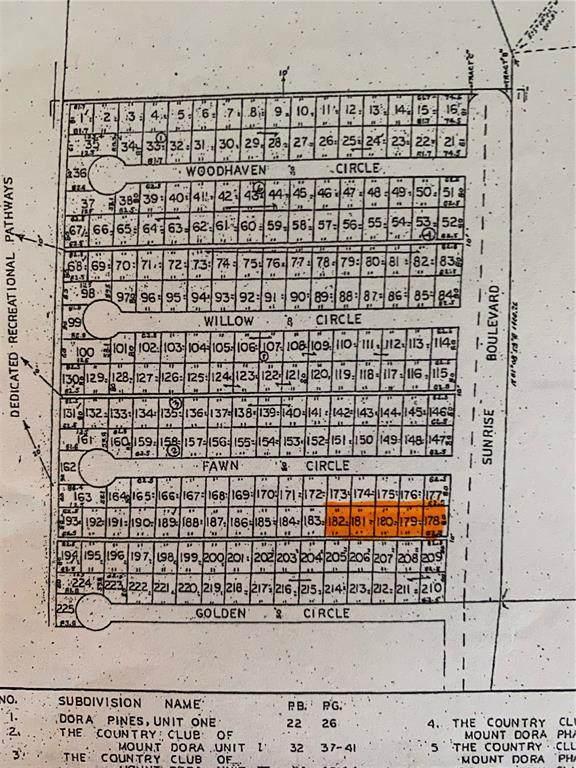 Sunrise Boulevard, Mount Dora, FL 32757 (MLS #G5044189) :: Gate Arty & the Group - Keller Williams Realty Smart