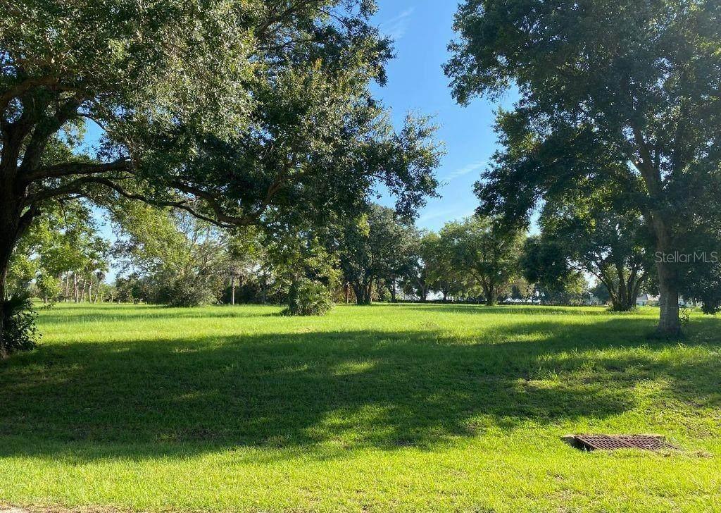 Lot 69.  Royal Palm Drive - Photo 1