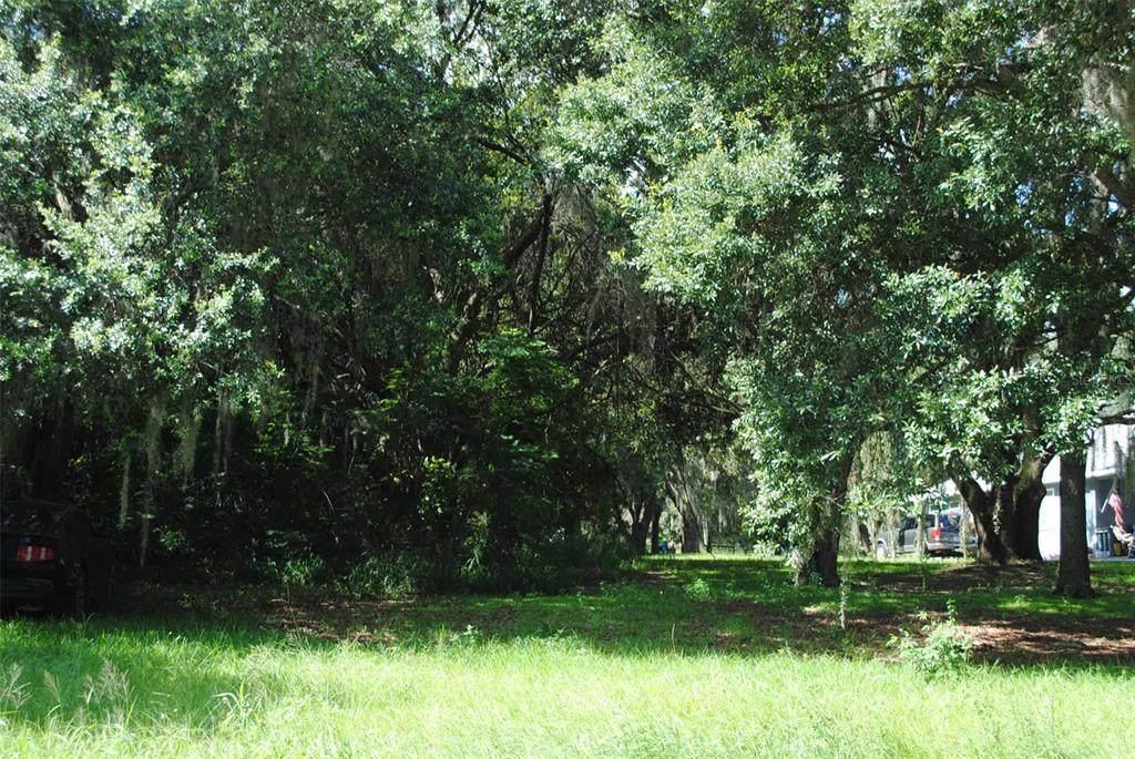 Florida Boys Ranch Road - Photo 1