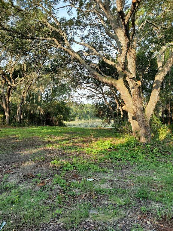 E Hwy 40, Silver Springs, FL 34488 (MLS #G5044776) :: Gate Arty & the Group - Keller Williams Realty Smart