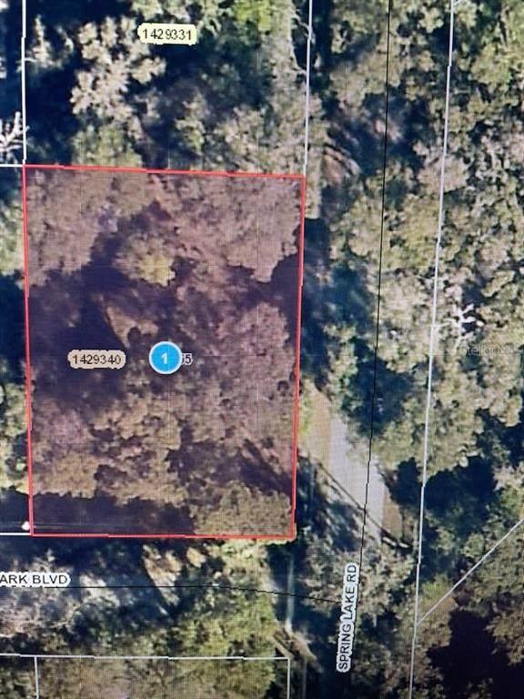 1255 Spring Lake Road, Fruitland Park, FL 34731 (MLS #G5044822) :: Kreidel Realty Group, LLC