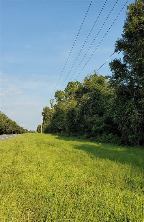 E Hwy 40, Silver Springs, FL 34488 (MLS #G5044934) :: Gate Arty & the Group - Keller Williams Realty Smart