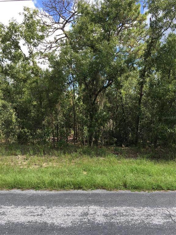 2787 W Sharpes Drive, Citrus Springs, FL 34433 (MLS #G5044938) :: RE/MAX LEGACY
