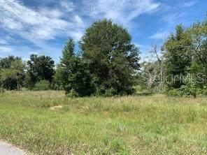 0 Stagecoach Trail, Eustis, FL 32736 (MLS #G5044944) :: CARE - Calhoun & Associates Real Estate