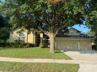 24728 Calusa Boulevard, Eustis, FL 32736 (MLS #G5045019) :: Griffin Group